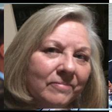 Lynn Von Villas icons